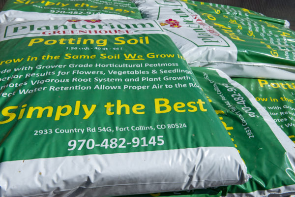 potting soil